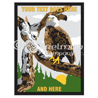 k1814-Bald-Eagle-On-Snowy-Branch