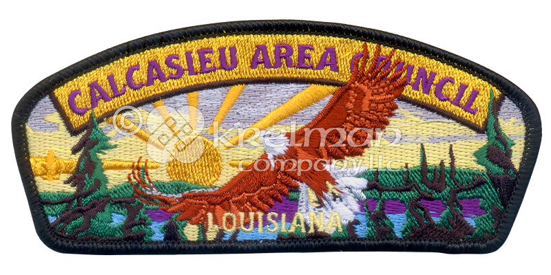 Three harbors council wood badge patches
